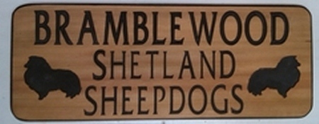 Camping sign routed into western cedar wood